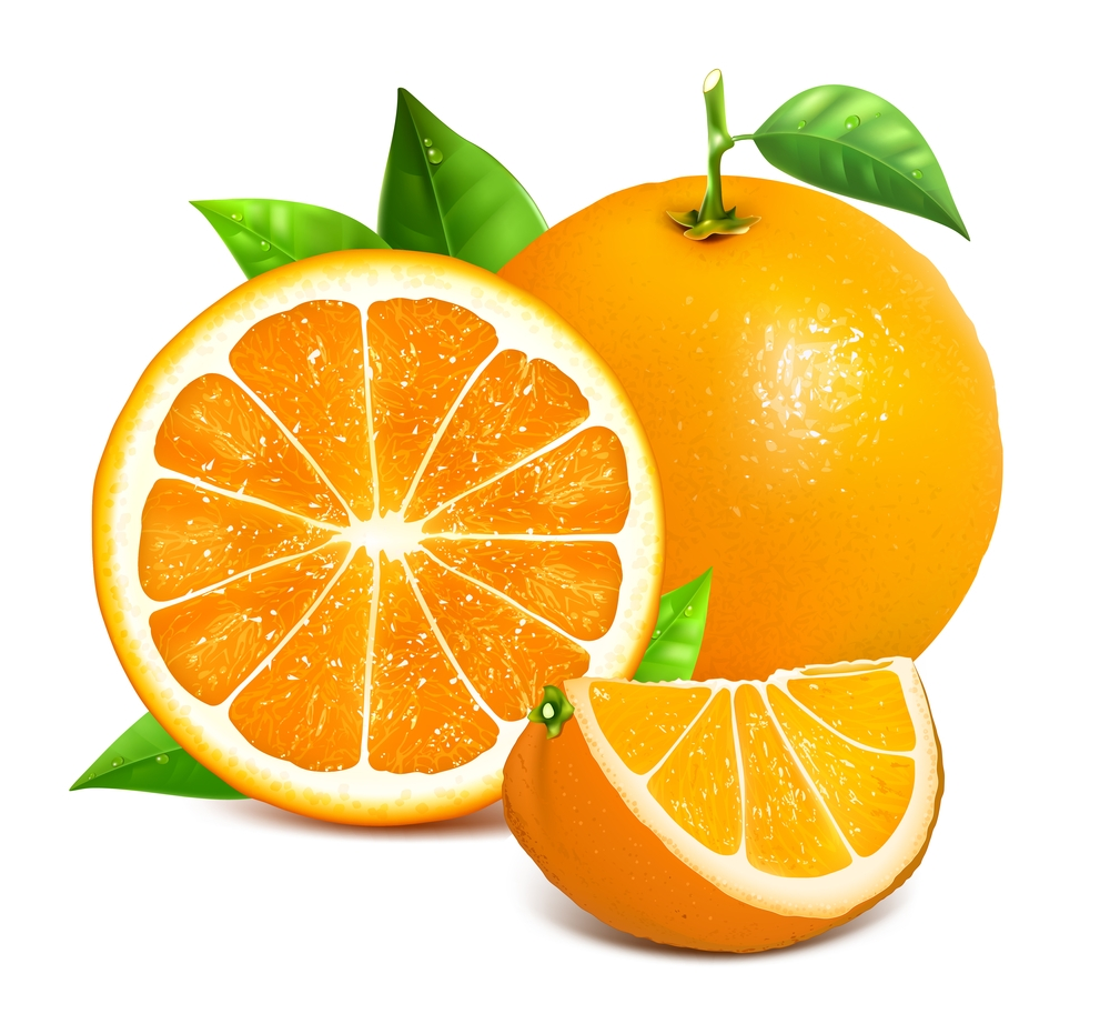 Orange Fruit Vector This Season Revive You...