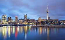 things to do in Auckland at night